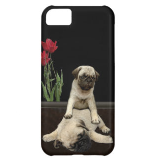 Cute Pug Pups Dog-lovers Phone Case
