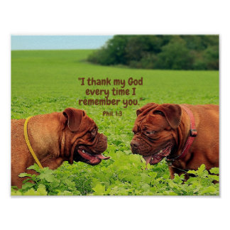Cute Pugs Scripture Poster - Thinking of You