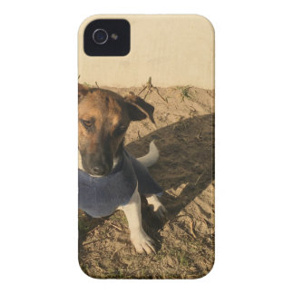Cute puppies Case-Mate iPhone 4 cases