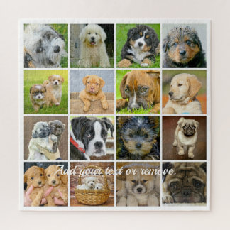 Cute puppies including the Labrador Retriever: Jigsaw Puzzle