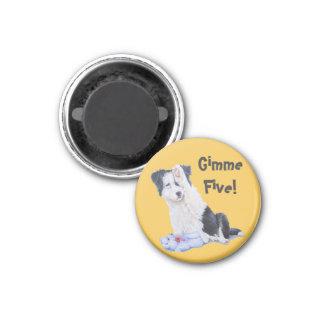 Cute puppy border collie realist dog portrait art 1 inch round magnet
