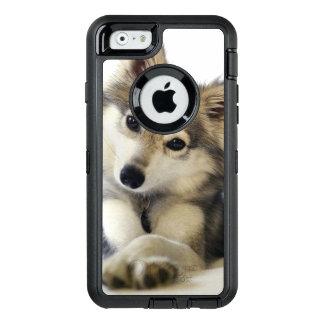 Cute Puppy case