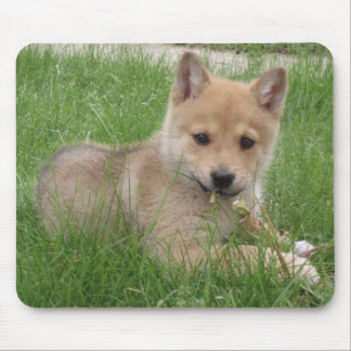 Cute Puppy Computer Mousepad
