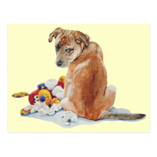 Cute puppy dog mixed breed with teddy realist art postcard