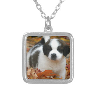 Cute Puppy Dog Pet Saint Bernard Silver Plated Necklace
