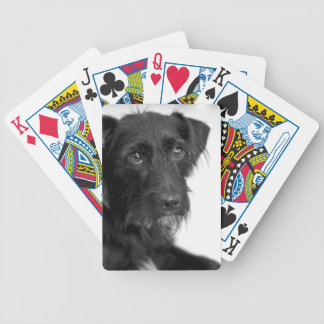 Cute Puppy Dog Playing Cards