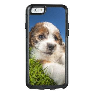 Cute puppy dog (Shitzu) OtterBox iPhone 6/6s Case