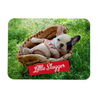 Cute Puppy in a Baseball Mitt Rectangular Photo Magnet