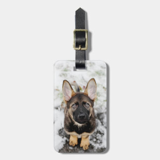 Cute Puppy Looking Up Luggage Tag