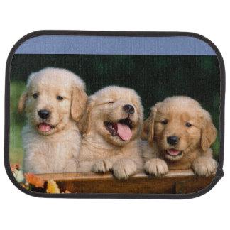 Cute puppy mat