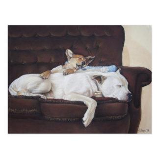 Cute puppy mixed breed dog realist art postcard