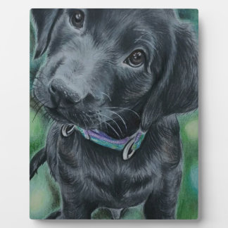 Cute puppy plaque