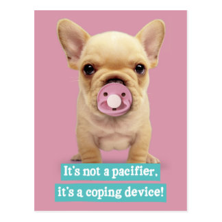 Cute Puppy with Pacifier Postcard