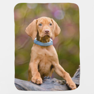Cute puppyeyed Hungarian Vizsla Dog Puppy Photo _* Baby Blanket