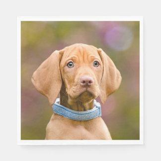 Cute puppyeyed Hungarian Vizsla Dog Puppy Photo / Disposable Napkin