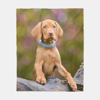 Cute puppyeyed Hungarian Vizsla Dog Puppy Photo _- Fleece Blanket