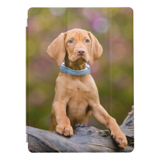 Cute puppyeyed Hungarian Vizsla Dog Puppy Photo .. iPad Pro Cover