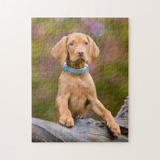 Cute puppyeyed Hungarian Vizsla Dog Puppy Photo / Jigsaw Puzzle