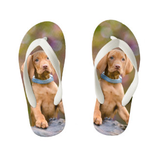 Cute puppyeyed Hungarian Vizsla Dog Puppy Photo -- Kid's Flip Flops