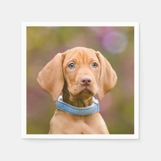 Cute puppyeyed Hungarian Vizsla Dog Puppy Photo /. Paper Napkin