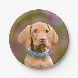 """Cute puppyeyed Hungarian Vizsla Dog Puppy Photo """""""" Paper Plate"""