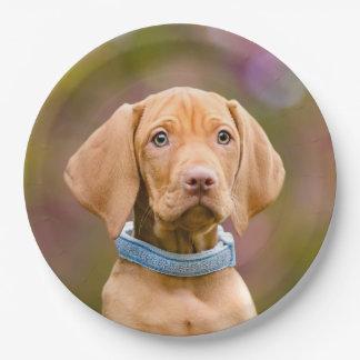 """Cute puppyeyed Hungarian Vizsla Dog Puppy Photo """" Paper Plate"""