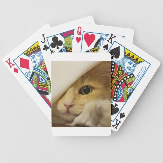 Cute Pussy Cat Poker Deck