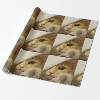 Cute Pussy Cat Wrapping Paper