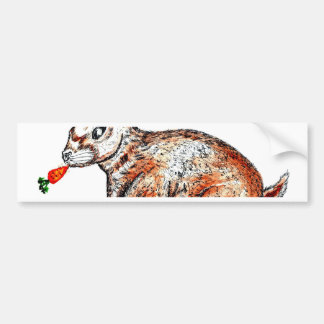 Cute Rabbit Drawing Bumper Sticker