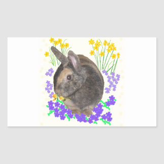 Cute Rabbit Photo and flowers