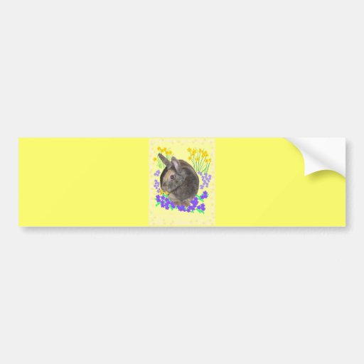 Cute Rabbit Photo and flowers Bumper Stickers