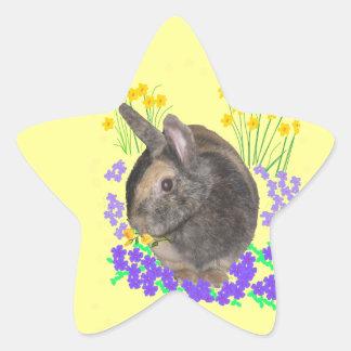 Cute Rabbit Photo and flowers Star Sticker