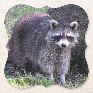 Cute Raccoon Paper Coaster