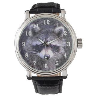 Cute Raccoon Watch