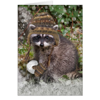 Cute Raccoon with mittens and a snowball Card