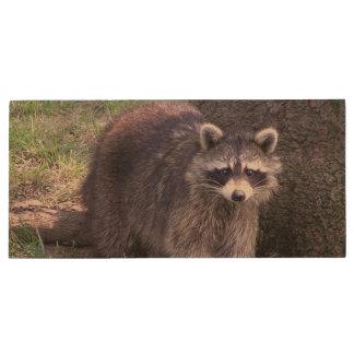 Cute Raccoon Wood USB Flash Drive