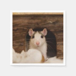 Cute Rat Disposable Napkin