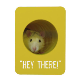 Cute Rat in Hole Funny Animal Magnet