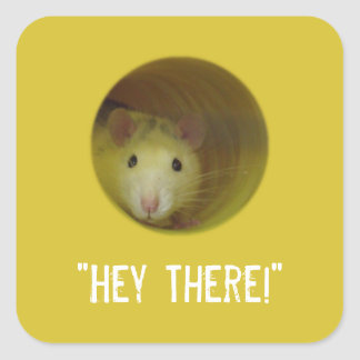 Cute Rat in Hole Funny Animal Square Sticker
