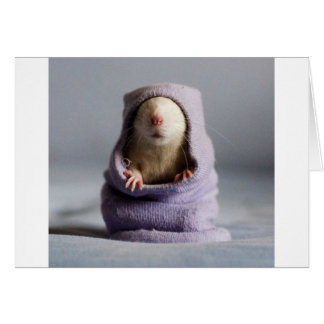 cute rat peek a boo card