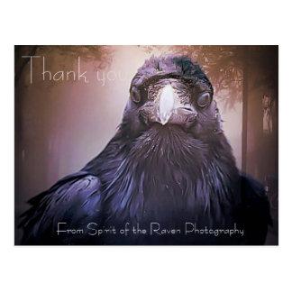 Cute Raven thank you postcard