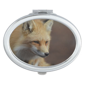 Cute Red Fox Vanity Mirrors