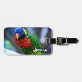 Cute red green yellow blue bird photo custom name luggage tag