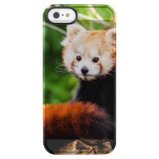 Cute Red Panda Bear Clear iPhone SE/5/5s Case