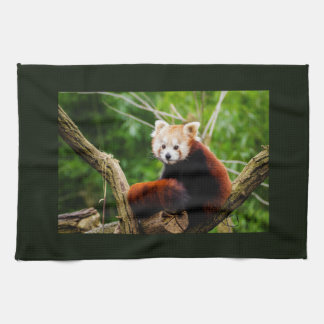 Cute Red Panda Bear Kitchen Towel