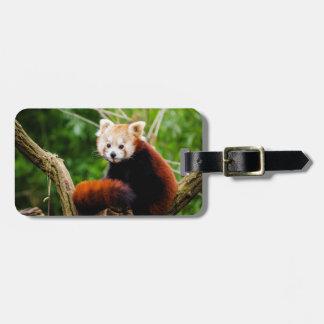 Cute Red Panda Bear Luggage Tag