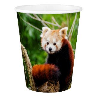 Cute Red Panda Bear Paper Cup