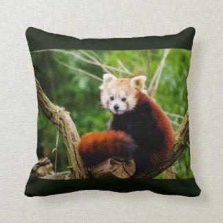 Cute Red Panda Bear Throw Pillow