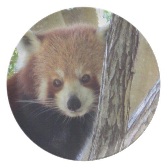 Cute Red Panda Plate