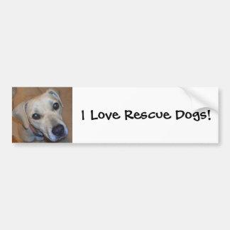 Cute Rescue Dog Bumper Sticker